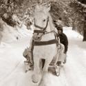 Útban hazafele, Erdélyben készült ez a kép. Egy hangulatos lov...