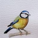 Akvarell madárkák: cinke sorozat - kékcinke, széncinke, barátcinege, Képzőművészet, Otthon, lakberendezés, Festmény, Akvarell, Cinkekedvelőknek. Akvarell festményeimről készített, A6-os méretű (105x148mm), kíváló minőségű művés..., Meska