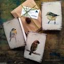 Madártanulmányok képeslapon - 3 db-os csomag, borítékkal, Képzőművészet, Naptár, képeslap, album, Festmény, Képeslap, levélpapír, Akvarell madártanulmányaim most már képeslap formájában is elérhetőek.  Az üdvözlőlapok mérete 148x1..., Meska