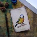 Kékcinke - festményeim képeslapon, borítékkal, Akvarell madártanulmányaim most már képeslap f...