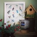 Madárhatározó, Dekoráció, Képzőművészet, Festmény, Illusztráció, A madárkás memóriajátékomhoz készült madárhatározó keretezhető változatban is elérhető, melyet A4-es..., Meska