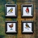Akvarell madártanulmányokról készült, keretezett művészi mininyomat