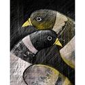 Galambok - kép, Otthon, lakberendezés, Falikép, Grafika két szerelmes madárról.  A kép kézi rajz alapú digitális grafika.  13 x 17cm  Csak személyes..., Meska
