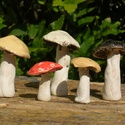 Apró gombák, Dekoráció, Otthon, lakberendezés, Dísz, Fehérre égő agyagból készítettem ezeket az apró gombákat.   Csak a kalapjuk mázazott. Méretük: 6x4 c..., Meska