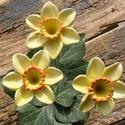 Nárciszok, Dekoráció, Otthon, lakberendezés, Dísz, Fehérre égő agyagból készítettem ezeket a tavaszi napfényt idéző virágokat.:)   Mázazott,kétszer ége..., Meska