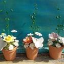 Óvó néniknek,dadusnak   szeretettel., Dekoráció, Otthon, lakberendezés, Dísz, Asztaldísz, .Fehérre égő agyagból készítettem ezeket a  virágokat.   .A nagy virágok átmérője 4,5 -5cm,zöld szín..., Meska
