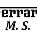 Ferrari könyvszobor, Megbeszélések alapján készülő könyvszobor