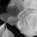 Papír virág. Szék dekoráció esküvőre, Esküvő, Esküvői dekoráció, Papírból készített rózsa .Papír virág.Esküvői dekorációnak ünnepi dekorációnak.Három ..., Meska