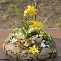 Kiskertem - tavaszi asztaldísz - KÉSZTERMÉK, Otthon, lakberendezés, Dekoráció, Dísz, Mindenmás, Virágkötés, Mohakoszorúból készítettem kiskertet a tavaszi hagymások zöld hajtásainak, amiket már úgy vártunk....., Meska